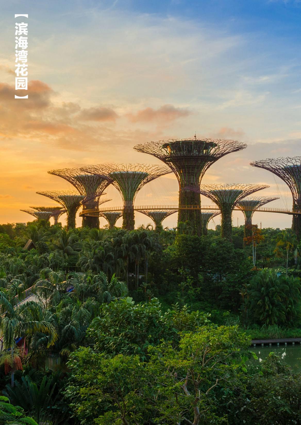 新加坡旅游-3